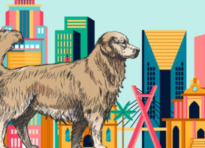 Суд в Бразилии признал право собак на компенсацию морального вреда