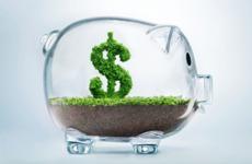 «Налоги на совесть»: что ждет бизнес после кодификации платежей / Фото: Getty Images Plus