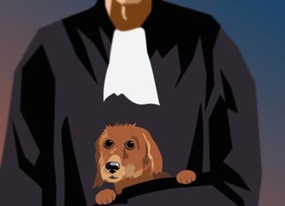 ВС одобрил уголовное преследование судьи за розыск собаки