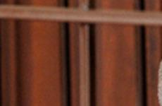 Экс-мэра Махачкалы приговорили к четырем годам колонии  / Муса Мусаев. Фото: Сергей Расулов/NewsTeam/ТАСС