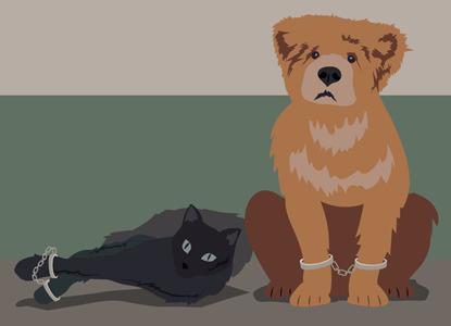 Звери за решеткой: когда и почему арестовывают животных
