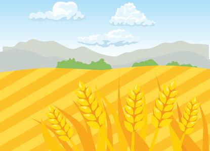 Модернизация зерна: представители рынка обсудили вопросы отрасли
