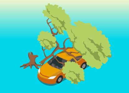 Упавшее дерево: ремонтируем машину за счет виновника